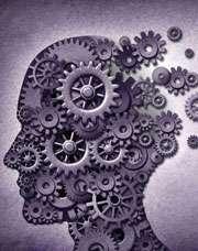 Полушария головного мозга - простой способ развития