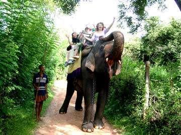 Шри-Ланка - Путешествие на слонах